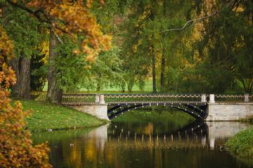 Bridge at autumn time
