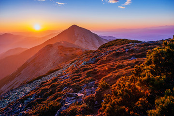 magic sunset in the mountains of Ukraine