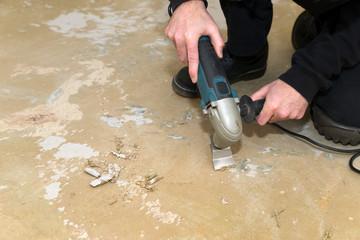 Bilder Und Videos Suchen Teppichreste