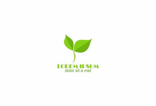 green nature eco tree leaf logo vecto