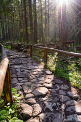 Tatra footpath, Tatra National Park, Poland