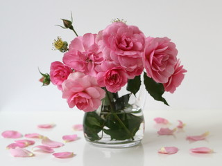 Bouquet of pink roses in a vase. Floral still life.