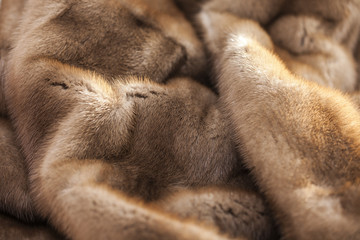 Product from fur of a mink Wall mural