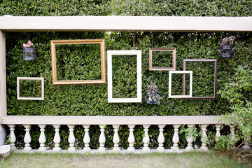Blank photo frames against green small tree wall and white fence