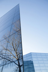 facades of modern glass building with reflections of blue sky an