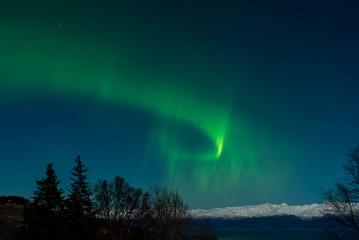 Bright green aurora over Kachemak Bay