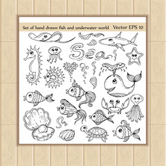 Vector set of hand drawn fish and underwater world icons