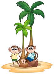 Monkey and tree