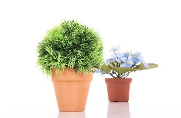 Couple of flower pot