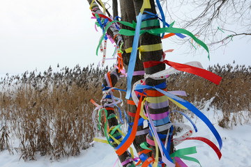 Multi-colored tapes on a tree in the winter