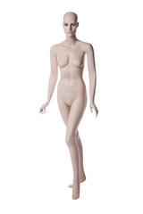 mannequin female isolated. maneken