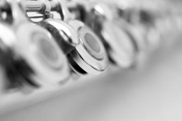 Fototapete - Fragment valves flute closeup