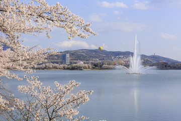 Take a trip to South Korea