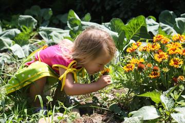 Small cute kid walk in garden