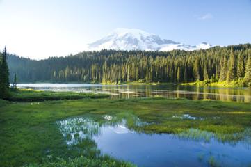 Poster de jardin Parc Naturel Mount Rainier at sun set - volcano, Washington, USA