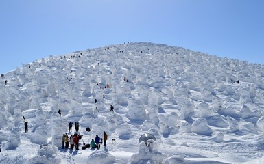 山形地蔵山の樹氷群