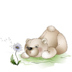 bear blows on a dandelion