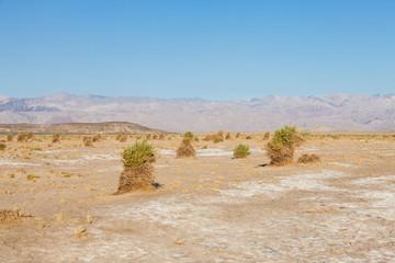 Wall Mural - Death Valley Desert