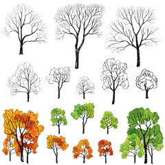 Four seasons tree symbol icon set. Hand Drawn Vector Illustration isolated over white background.