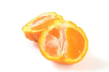Sumo orange