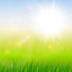 Natural sunny green background