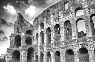 Fotomurales - The Colosseum, Rome