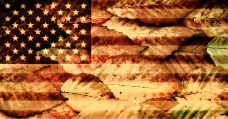 USA Flag over Beech Leaves