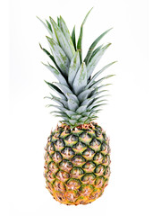 Isolated Pineapple on White