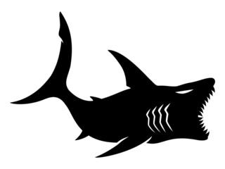 Vector sign. Shark.