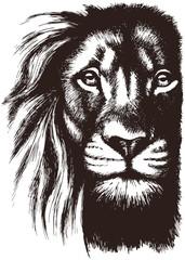 Foto op Canvas Hand getrokken schets van dieren Lion head vector