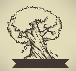 old olive tree, vector illuctration