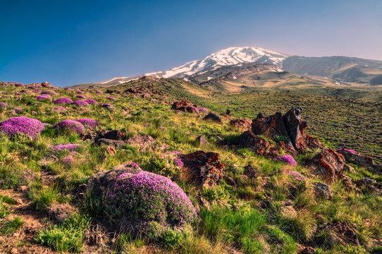 Damavand in Iran