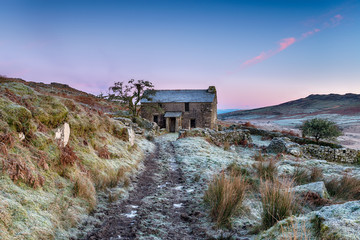 Wall Mural - Frosty Morning on the Moor