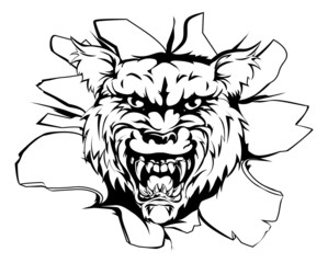 Wolf or Werewolf breakout