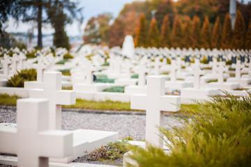 Military Cemetery Lvov