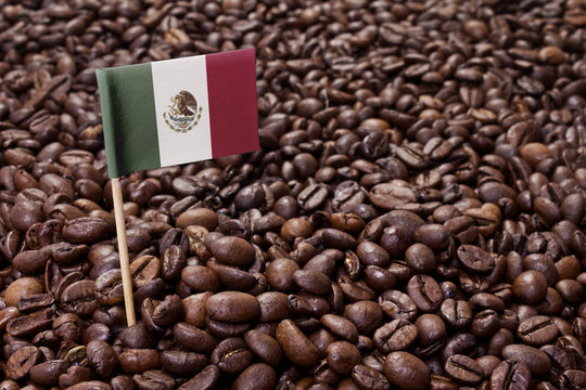 Flag of Mexico sticking in coffee beans.(series)