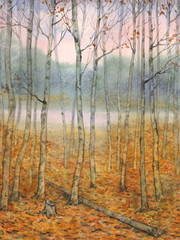 Watercolor landscape. A quiet evening in the autumn forest