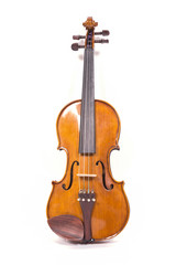Violin isolated on white background,string instrument