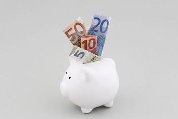 Sparschwein mit 5,10,20 und 50 Euro Scheinen