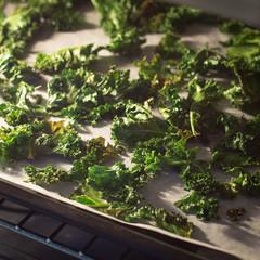 Homemade Kale Chipsa