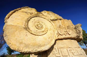 Metaponto Tempio Ionico