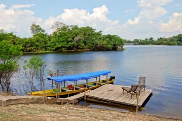 Amazon rainforest - Canoe expedition near Manaus, Brazil