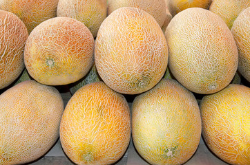 Melons in the market