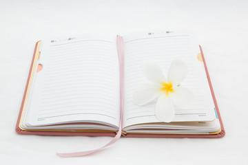diary with plumeria flower
