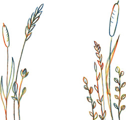 Line drawing flowers and grass