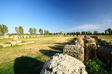 Metaponto Tempio di Apollo