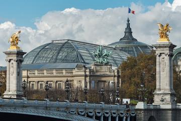 Fotobehang Delhi Alexander III bridge and the Grand Palace in Paris