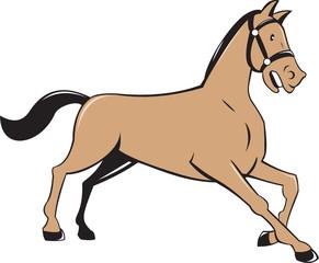 Horse Kneeling Down Cartoon