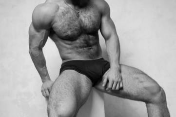 Hairly model