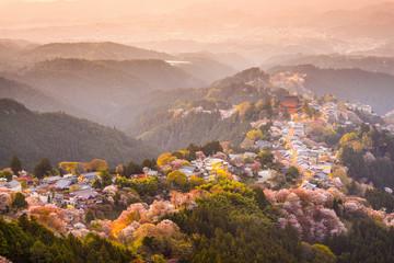 Foto op Aluminium Japan Yoshinoyama, Nara, Japan Hilltop village in Spring